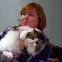 Обиженный кот :: Дубовцев Евгений