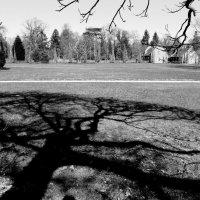Домики у парка :: Tanja Gerster
