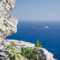 Утесы Дингли, Мальта :: Александр Антонович