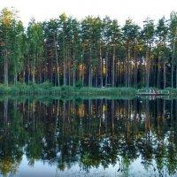 Вечернее купание :: Tanja Gerster