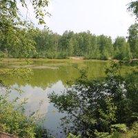 Лесное озеро :: Ольга НН