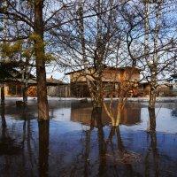 Потоп в замороженном виде :: Сергей Шаврин