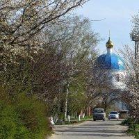 Дорога к Храму :: Татьяна Смоляниченко