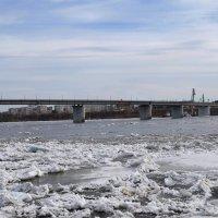 Ледоход на реке Томь :: Вера Андреева