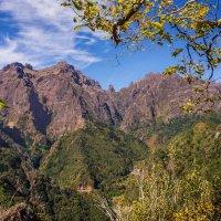 В горах Мадейры :: Тиша
