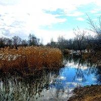 московский весенний пейзаж :: megaden774