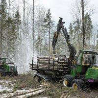 Лесозаготовка :: Кириловский Алексей
