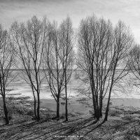 Апрель. озеро Неро :: Алексадр Мякшин