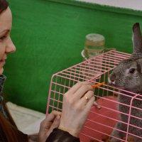 В гостях у пасхального кролика... :: Елена Третьякова
