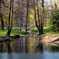 Сказочный лес. :: Marik no_name