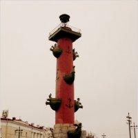 Ростральная колонна :: Galina Belugina