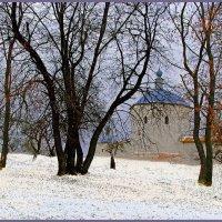 Южный фас  Свенского монастыря зимой :: Дубовцев Евгений