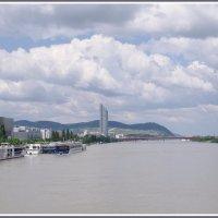 Облака над Дунаем. :: Николай Панов