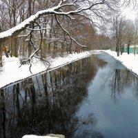 Весенний пруд... :: Sergey Gordoff