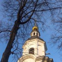 Церковь Успения Богородицы в Вешняках. Колокольня :: Александра