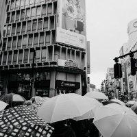 The Rain in Shibuya :: Станислав Маун