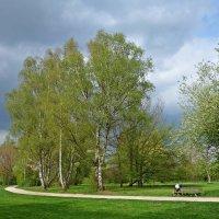 """""""Пробудившись ото сна, Кистью мягкою весна На ветвях рисует почки..."""" :: Galina Dzubina"""