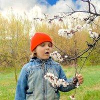 Весна... :: Александр Мартынов