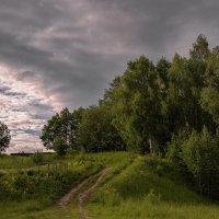 Знакомой тропой :: Владимир Макаров