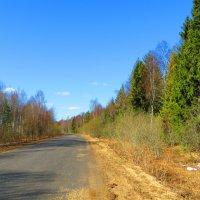 Дорога домой... :: ВАЛЕНТИНА ИВАНОВА