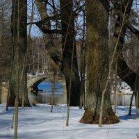 над озером :: sv.kaschuk
