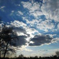 Облака , белокрылые лошадки .... :: Арина Саенко