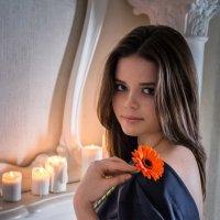 Нежный цветок :: Ольга Варсеева