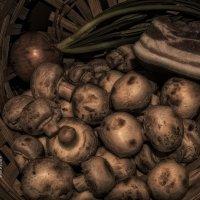 мои грибочки :: Роза Бара