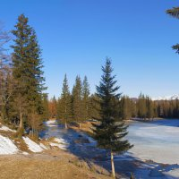 За околицей весна :: Анатолий Иргл