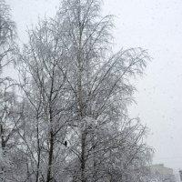 Утро 22 апреля в Питере :: Александр Петров