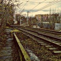 Унылым мартовским днем... :: Андрей Головкин