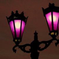 Ночные огни Сургута :: Александра Бояркина