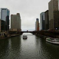 Chicago :: Максим Тураев