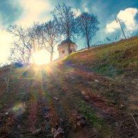 Солнце над стеной :: Dimirtyi