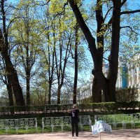 Одинокий музыкант :: alemigun