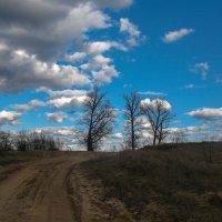 Нашествие облаков :: Марина Ломина