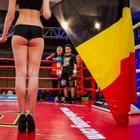 О флаге Бельгии... :: Сергей Офицер