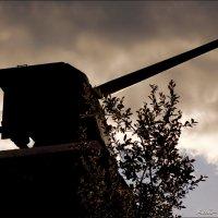 Корабельное орудие :: Кай-8 (Ярослав) Забелин