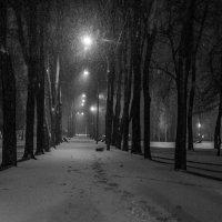 Метель :: Андрей Никитин
