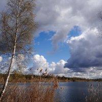 Свинцовые облака.. :: Антонина Гугаева