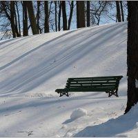 присядь, зима, на дорожку :: sv.kaschuk
