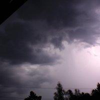 Летний дождь :: Алексей Коган