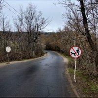 Опасный участок дороги. :: Anatol Livtsov