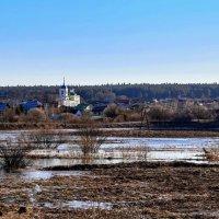 Первый выезд в этом году в деревню, на дачу. :: Пётр Сесекин