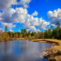 Spring motives :: Дмитрий Янтарев