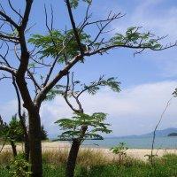 острова Вьетнама :: youry