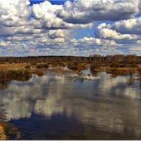 Разлив и облака :: Вячеслав Минаев
