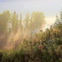 Солнце пробивает туман :: Сергей Чиняев