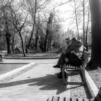 Весна. :: Владимир Безбородов
