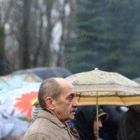 Забыл зонт :: Татьяна Панчешная